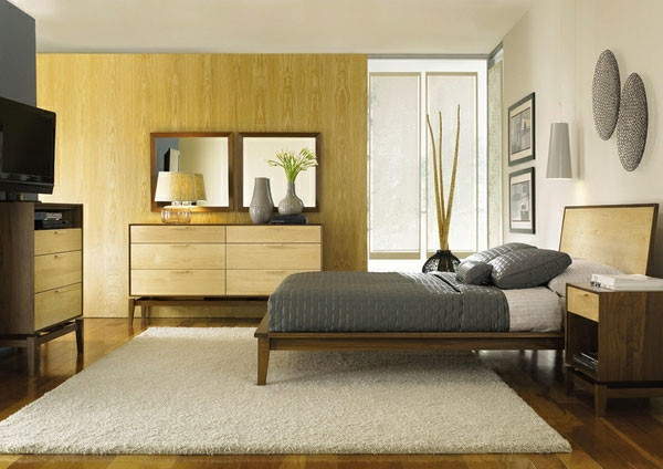 Ambiente Furniture for Modern Bedroom with North Carolina