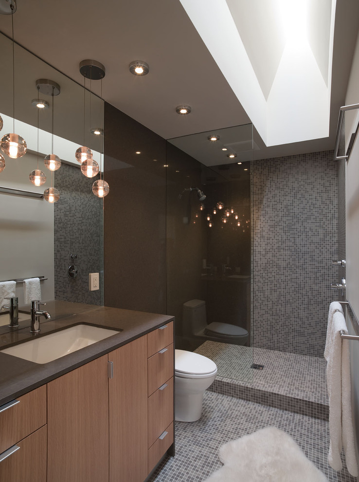 Binswanger Glass Austin for Contemporary Bathroom with Accent Wall