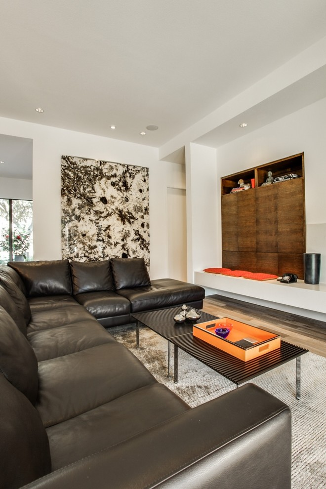 Bullnose Tile San Jose for Midcentury Living Room with Stone Art