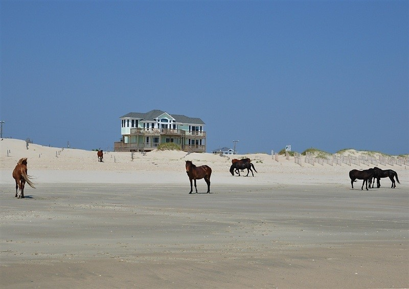 Carova Beach for Beach Style Exterior with Carova Beach