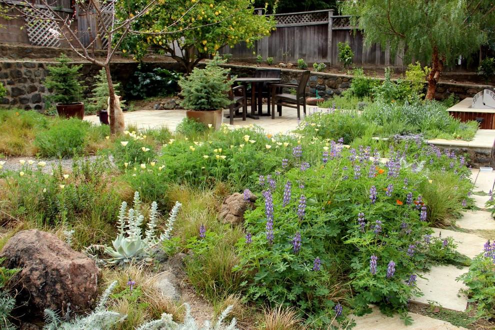 Craigslist San Luis Obispo for Mediterranean Landscape with Water Wise