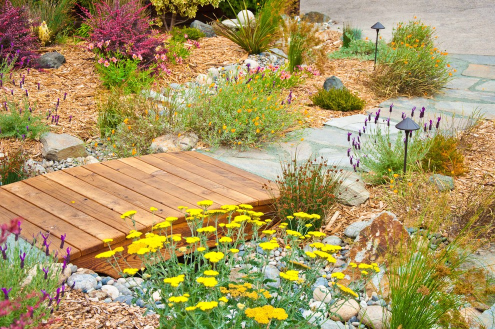 Drainage Ditch for Mediterranean Landscape with Stone Pathway