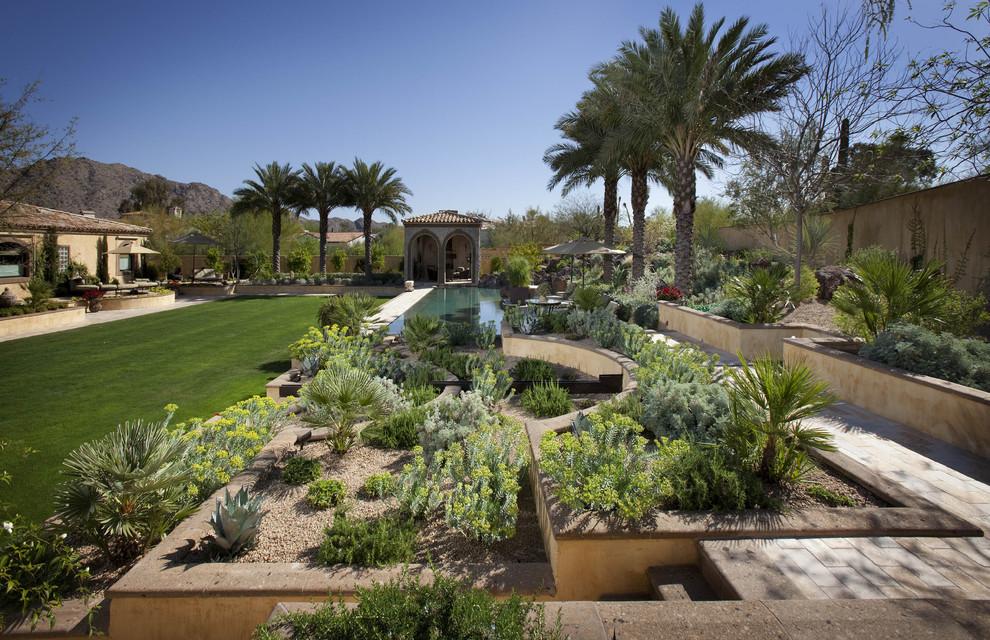 Gopher Plant for Mediterranean Landscape with Tile Roof