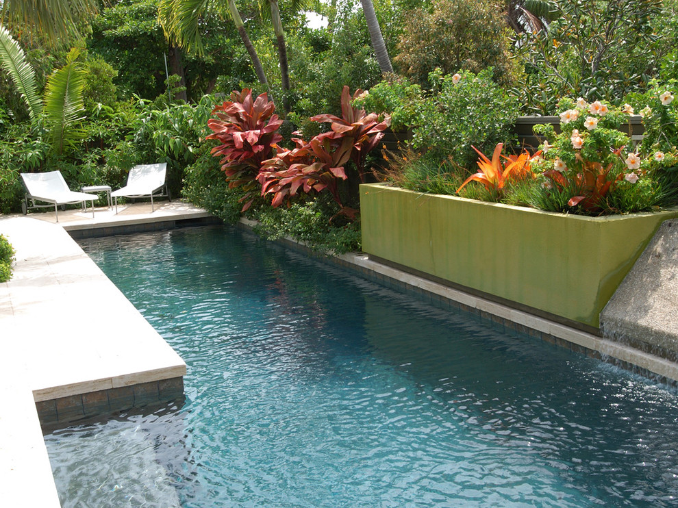 Islander Pools for Contemporary Pool with Pool Step
