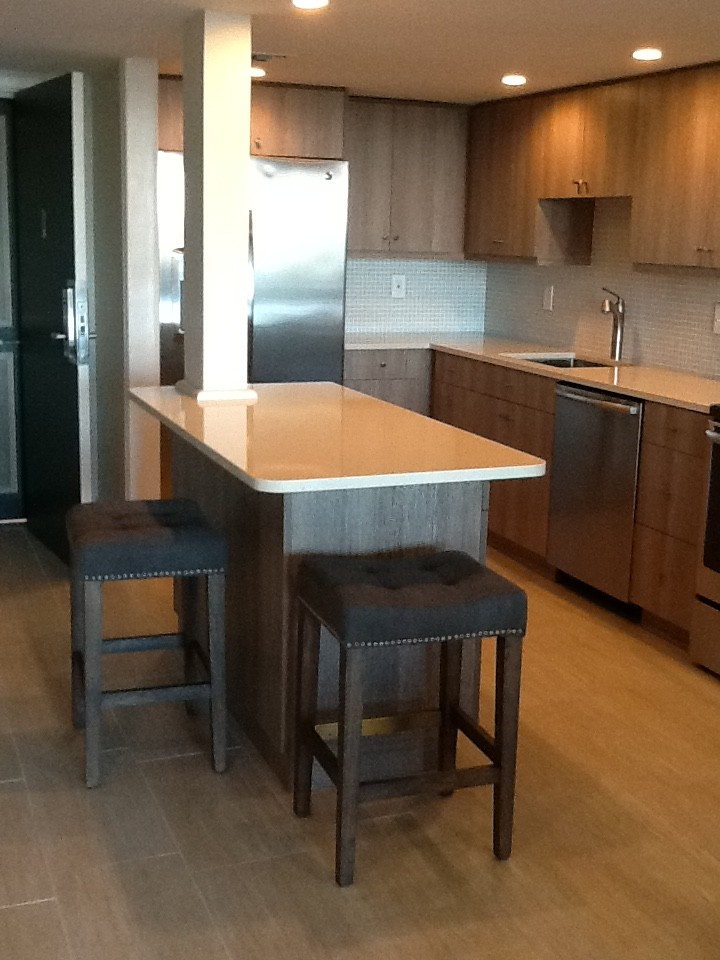 Lotts Furniture for Contemporary Kitchen with Contemporary