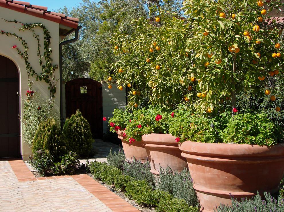 Lowes Lafayette La for Mediterranean Landscape with Container Plants