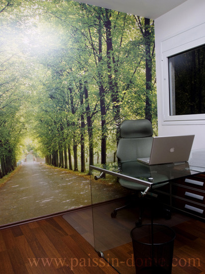 Panorama Trail Yosemite for Modern Home Office with Wood Floor