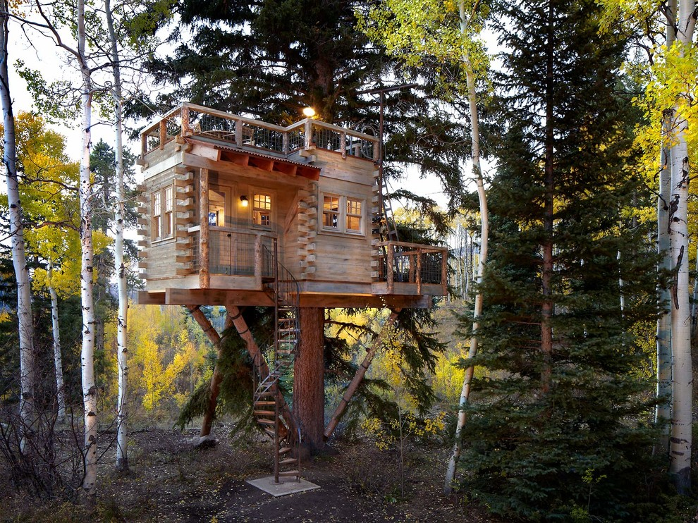 Treehouse Designs for Rustic Exterior with Outdoor Lighting