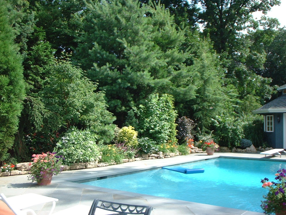 Tri State Pools for Traditional Pool with Traditional