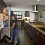 Agway Energy for Contemporary Kitchen with Wenge Cabinetry