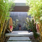 Bamboo Sherman Oaks for Contemporary Landscape with Slate Wall