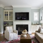 Benjamin Moore Tranquility for Traditional Family Room with Sofa