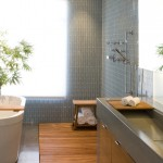 Best Buy Mechanicsburg Pa for Contemporary Bathroom with Rain Shower