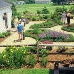 Bloomin Gardens for Traditional Landscape with Seven Months After Installation and Ready to Be on the Just