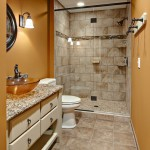 Bloomington Hardware for Traditional Bathroom with Glass Shower Door