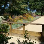Bocce Ball Court for Transitional Landscape with Trees