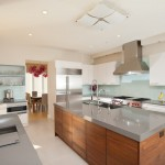Cambria Countertops for Contemporary Kitchen with Zebrawood