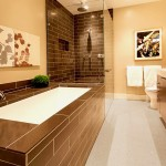 Cancos Tile for Contemporary Bathroom with Tile