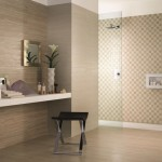 Capco Tile for Transitional Bathroom with Walk in Shower