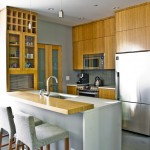 Ceaserstone for Modern Kitchen with Bamboo Cabinets