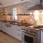 Chicago Faucet Shoppe for Contemporary Kitchen with Apron Sink