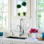 Chicago Faucet Shoppe for Traditional Kitchen with Flowers
