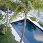 Clover Pools for Tropical Pool with Waterfront