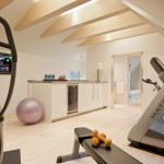 Color Matcher for Modern Home Gym with Modern