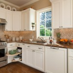Color Matcher for Traditional Kitchen with Window Backsplash