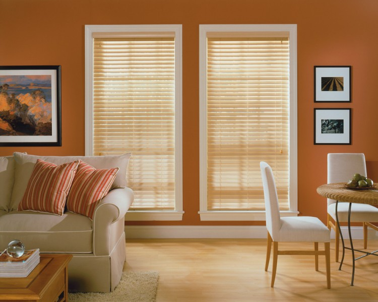 Comfortex for Traditional Living Room with Traditional