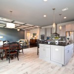 Coopers Lake for Transitional Kitchen with Flat Panel Cabinetry