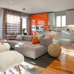 Counch for Contemporary Living Room with Bright Orange