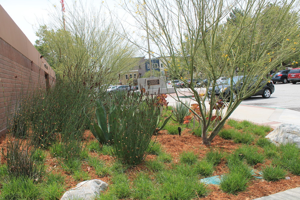 Covina Police Department for Traditional Spaces with Drought Tolerant