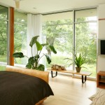 Darkside Window Tinting for Modern Bedroom with Plants
