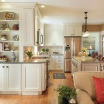 Decora Cabinets for Transitional Kitchen with Silestone