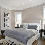 Difference Between Duvet and Comforter for Traditional Bedroom with White Trim