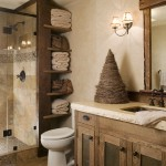 Dishnet Customer Service for Rustic Bathroom with Pebble Tile