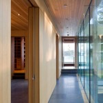 Drywall Alternatives for Modern Hall with Kitchen