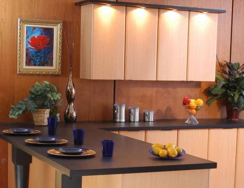 Executive Cabinetry for Modern Kitchen with Wood Cabinets