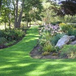 Fairway Lawns for Traditional Landscape with Rocks