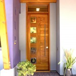 Feather River Doors for Contemporary Entry with Potted Plants