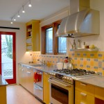 Forbo for Contemporary Kitchen with Stainless Countertop