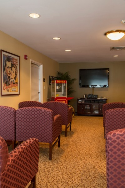 Framingham Theater for Traditional Home Theater with Old Hollywood Glamour