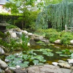 Frontier Rochester Ny for Traditional Landscape with Pond Renovation