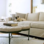 Gabby Furniture for Transitional Living Room with My Houzz