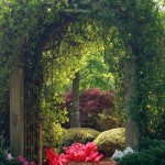 Garden Crossings for Traditional Landscape with Japanese Maple