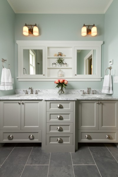 Get Rid of Fruit Flies for Traditional Bathroom with Painted Cabinets