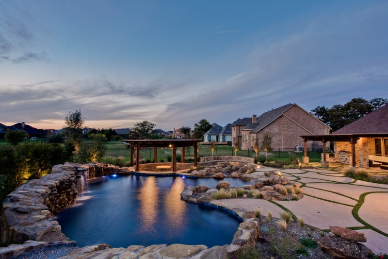 Goldfinch Bird for Tropical Pool with Best Pool Builders Dallas