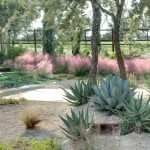Gulf Coast Dermatology for Modern Landscape with Feather Grass