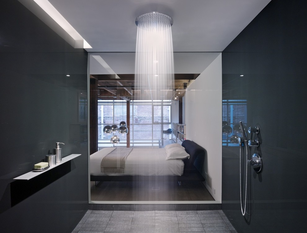 Hansgrohe Usa for Modern Bathroom with Starck